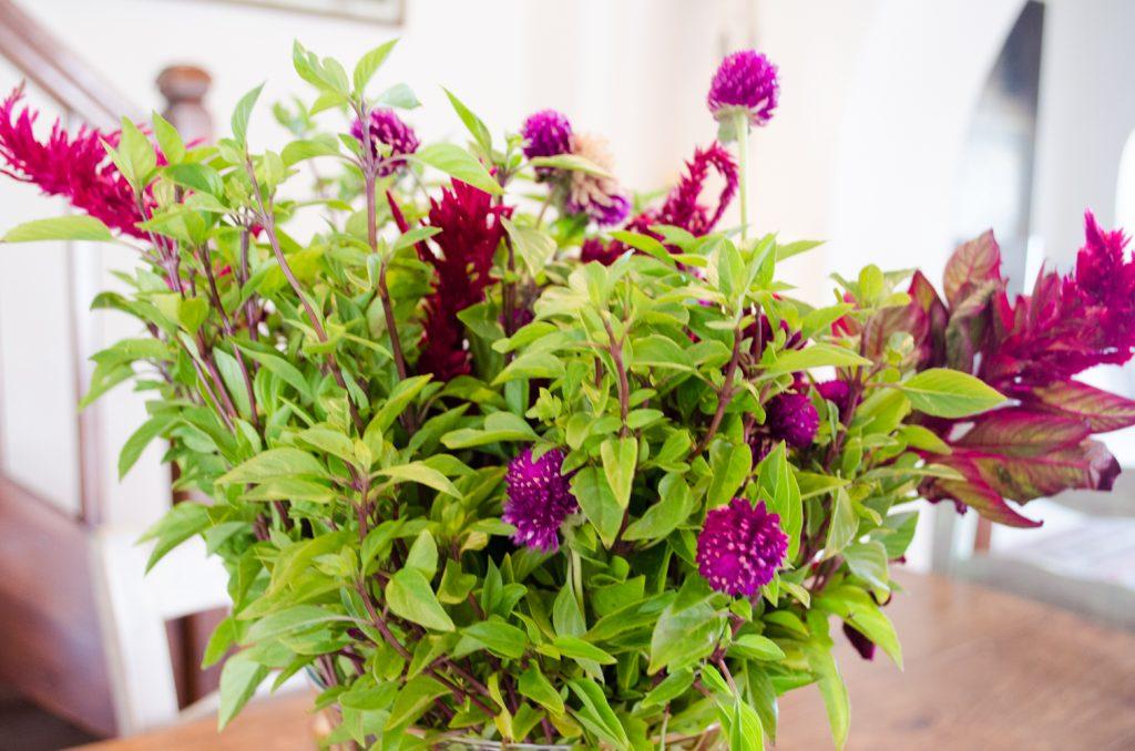 flowers-villa-hurmuses-1