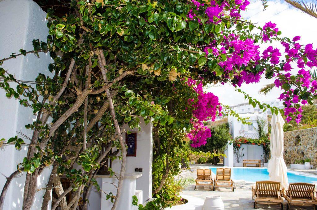 villa-hurmuses-garden